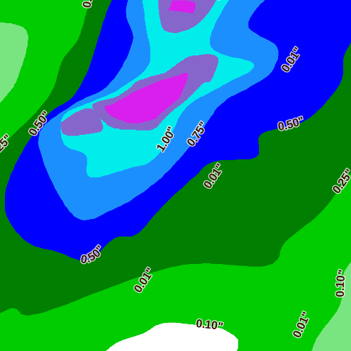 Preview of Precip Forecast (24-Hour)